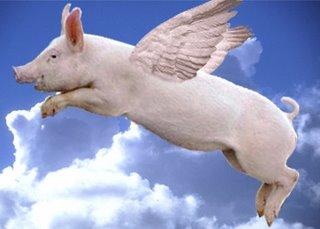 Flying+Pig